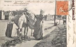 URUGUAY LAVANDERAS LAVANDIERE ANE 1900 - Uruguay