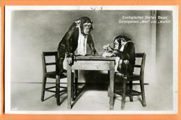 FAD-14 Singes Chimpanzés MAX Et MORITZ Du Zoo De Bâle, Schimpanzen Zoo Basel.  Gelaufen In 1931 - Scimmie