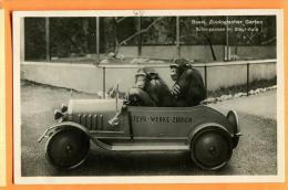 FAD-15 Singes Chimpanzés En Auto MAX Et MORITZ Du Zoo De Bâle, Schimpanzen Im Steyr-Auto Zoo Basel.  Gelaufen In 1934 - Scimmie
