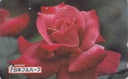 Télécarte Japon - FLEUR ROSE ROUGE - Flower Japan Phonecard - Blume Telefonkarte - Fruehauf Germany - 1879 - Fleurs