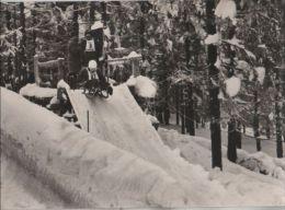 Friedrichroda - Rennrodel-Weltmeisterschaften - 1967 - Friedrichroda