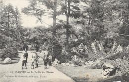 Nantes - Le Jardin Des Plantes - Collection R. Guénault - Carte Non Circulée - Nantes