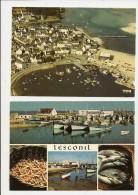 Prix Cassé - VENTE DIRECTE: Port De Pêche De LESCONIL En PLOBANNALEC- 2 Cartes De 1978 - Plobannalec-Lesconil