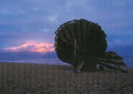 Postcard - Aldeburgh Scallop At Sunrise, Suffolk. 2003 - Other