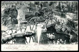 Gibraltar, The Cascade, 18.5.1907, V.B. Cumbo - Gibraltar