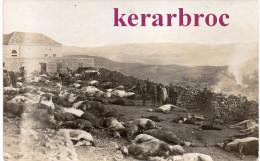 Lot De 2 CPA SYRIE SOUEÏDA Soueda Djebel Druze Révolte Massacre 1925. Après L'attaque D'un Fortin. - Syria