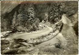 CPMGF 3041 Ed Jove - Route De Cauterets Au Pont D´Espagne - 2 Scans - Cauterets