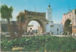 AFRIQUE,AFRICA,AFRIKA,MAGHREB,TUNISIE,TUNISIA,TUNIS,EL KHADRA - Cartes Postales