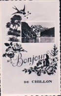 Un Bonjour De Chillon (10762) - VD Vaud