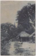 Postal Timor - Uma Paisagem Do Interior - CPA - Carte Postale - Postcard - Timor Oriental