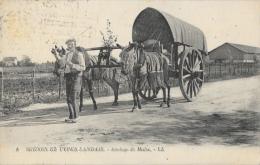 Scènes Et Types Landais - Attelage De Mules - Carte LL N°1 - Wagengespanne