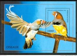 1996 Guinea Uccelli Birds Oiseaux Vogel Block MNH** Fo120 - Guinea (1958-...)