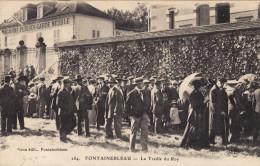 Fontainebleau - La Treille Du Roy - Fontainebleau