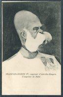 Francois Joseph 1st / Franz Joseph Emporer D' Autriche-Hongrie. L'Emporer De Babel, Royalty Satire Postcard - Satirical