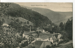 BAD RIPPOLDS-AU - Bad Rippoldsau - Schapbach