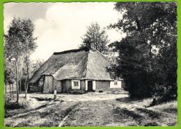 ACHTERBOSCH-MOL - Vieille Ferme Oude Boerderij Carte Non Circulé - Mol