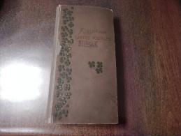 Album De Famille, Incomplet Mais Comportant 242 CP - Collections