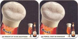 #D100-181 Viltje Dubuisson - Sous-bocks