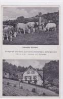 Viehwelde Schwend - Wirtschaft Waldeck, Schwend (achertal) L. Schwarzwald - 790 M ü M. - Besitzer Ant. Schneider - Unclassified