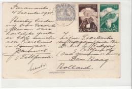 Surinam / Postcards - Suriname ... - 1975