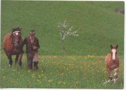 Le Temps Qui Passe (photo Rosenfield) Feeling - Homme Jument Poulain Au Pré (cheval Chevaux) Zefa - Pferde