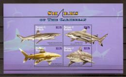 Antigua 2010, Nr. 4759-62 Haie Postfrisch (mnh) - Antigua Und Barbuda (1981-...)