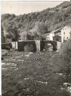 Grande Photo - Saurier - Vieux Pont Dur La Couze - Places