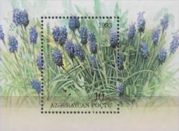 Azerbaijan 1993. Flowers.Sheet.1v.Michel.2. MNH.22519 - Végétaux