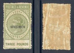 SOUTH AUSTRALIA, 1880s £3 With SPECIMEN Overprint (gum Toned) - 1855-1912 South Australia