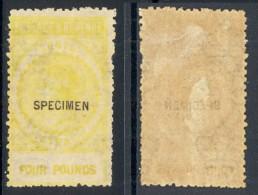 SOUTH AUSTRALIA, 1880s £4 With SPECIMEN Overprint (gum Fine) - 1855-1912 South Australia