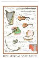 CPM IRISH MUSICAL INSTRUMENTS INSTRUMENTS DE MUSIQUE IRLANDAIS PARTITION - Music And Musicians