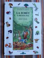 LA FORET A PETITS PAS   Durand Feterman Illustrations De R. Gindre   Acte Sud Junior    Office National Des Foerts - Livres, BD, Revues