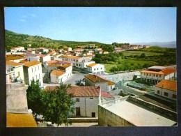 SARDEGNA -SASSARI -BOTTIDA -F.G. LOTTO N°513 - Sassari