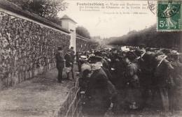 Fontainebleau - Vente Aux Enchères Par L'administrateur Des Domaines Du Chasselas De La Treille Du Roy - Fontainebleau