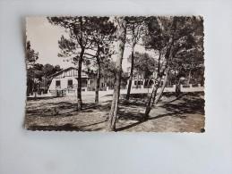 "Carte Postale Ancienne : LACANAU OCEAN : Rue Danton, Villas ""La Sauvagine"" , ""La Lezardière"", En 1958 - France"