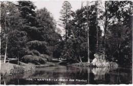Cpsm  NANTES   Le Jardin Des Plantes - Nantes