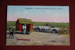 EN BEAUCE - Le Berger Dans Son Abri  Près Du Parc à Moutons. - Elevage