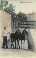 Haras - Bain De Chevaux - Carte Colorisée - Viehzucht