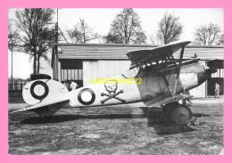 CPSM (guerre 1914-1918) Allemagne Monoplan De Chasse Albatros D5 - Autres