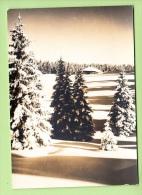 PONTARLIER - Hiver Dans Le Haut Doubs - Superbe Carte En TBE PHOTO STAINACRE - 2 Scans - Pontarlier