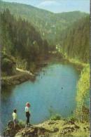RO.- Lacu Rosu. Roemenië. Red Lake. Romania. - Stamp - Posta Romana 1 Leu. Train. Trein.  2 Scans - Roemenië