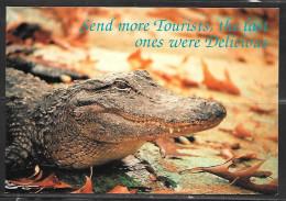 "Alligator, ""Send More Tourists, The Last Ones Were Delicious"", Unused - United States"
