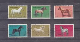 1984 - Races De Chevaux Michel No 4077/4082 Et Yv No 3528/3533 - 1948-.... Repúblicas