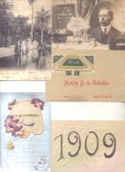 COLECCION DE LA ARISTOCRATA PARAGUAYA HONORINA PETTIROSSI OCTAVO LOTE GENERAL DE 23 POSTALES DIFERENTES - Postkaarten