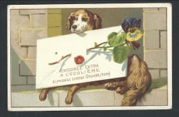 Ancien Chromo Publicitaire - CHICOREE A L'ECOLIERE - Orchies - Chien Dog - Fleur Pensée   // - Thé & Café