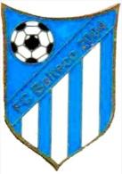 Football Soccer. Pin Estonia. Balteco Saku - Football