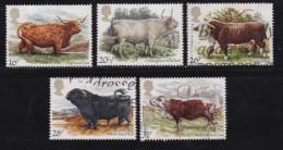 UK, 1984, Cancelled Stamp(s ), British Cattle, 979-983 #14456 - 1952-.... (Elizabeth II)