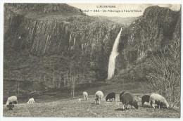 CPA CANTAL - 15 - Moutons Aux Pâturage à Falhitoux - Andere Gemeenten