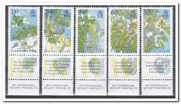 Kaaiman Eilanden 2006, Postfris MNH, Trees - Kaaiman Eilanden