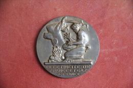 Médaille ELECTRICITE DE FRANCE Et GAZ De FRANCE  - 20 ANNEES DE SERVICE - - Professionnels / De Société